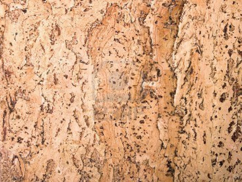 6639584-texture-of-the-cork-material