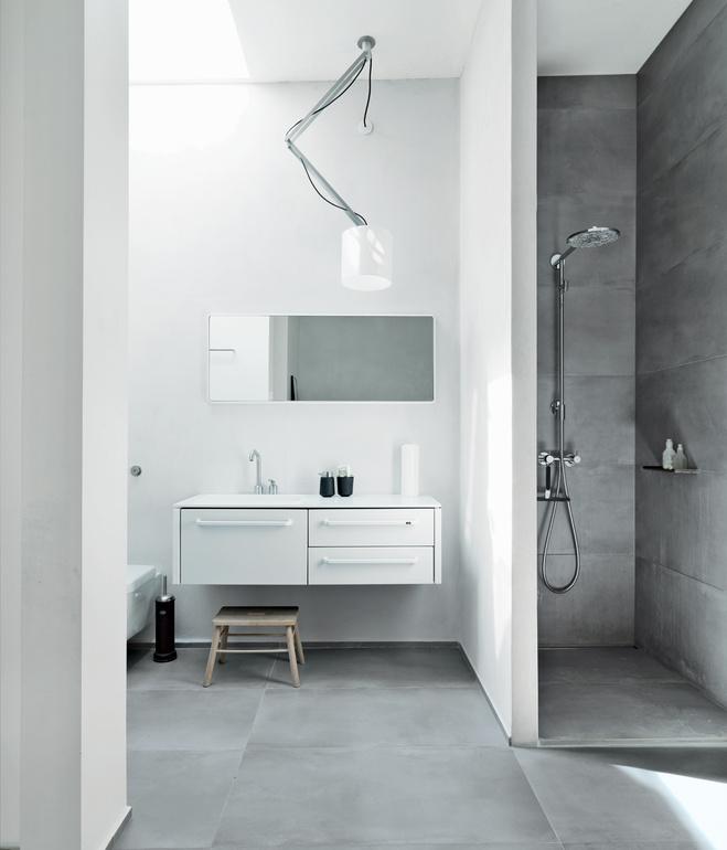great-danes-bathroom