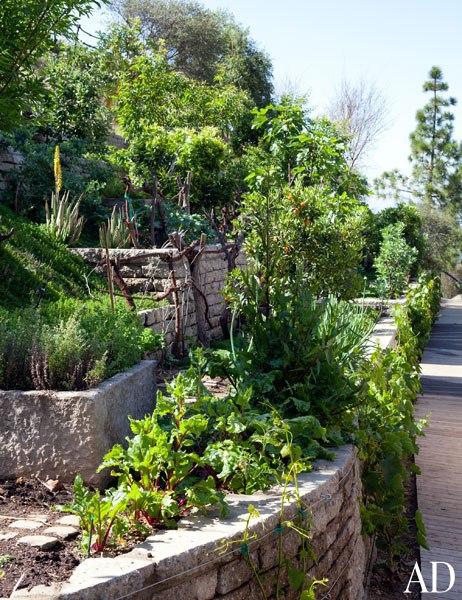 item8.rendition.slideshowWideVertical.eco-tips-09-gisele-bundchen-garden