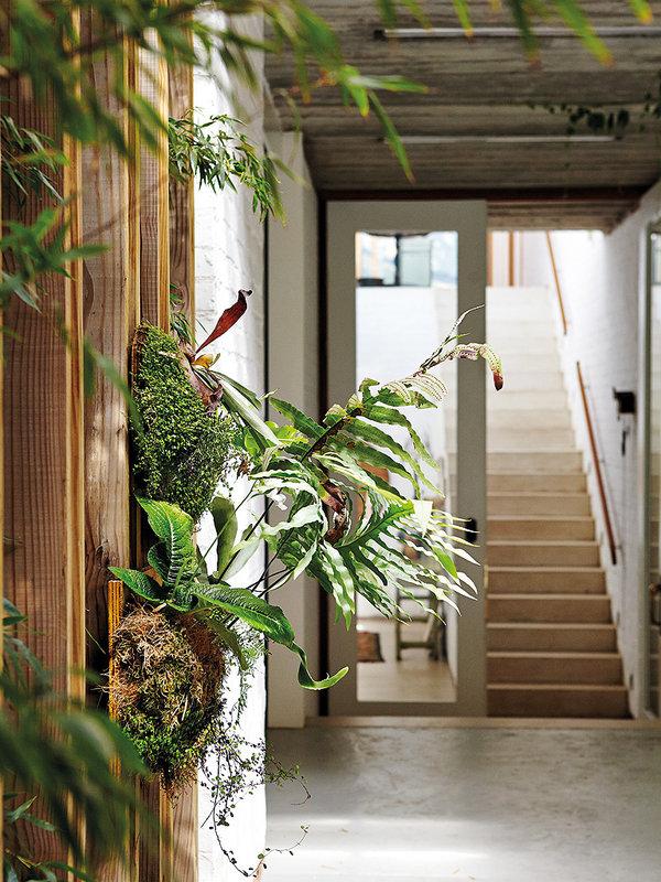 jardin-vertical-en-la-entrada_ampliacion