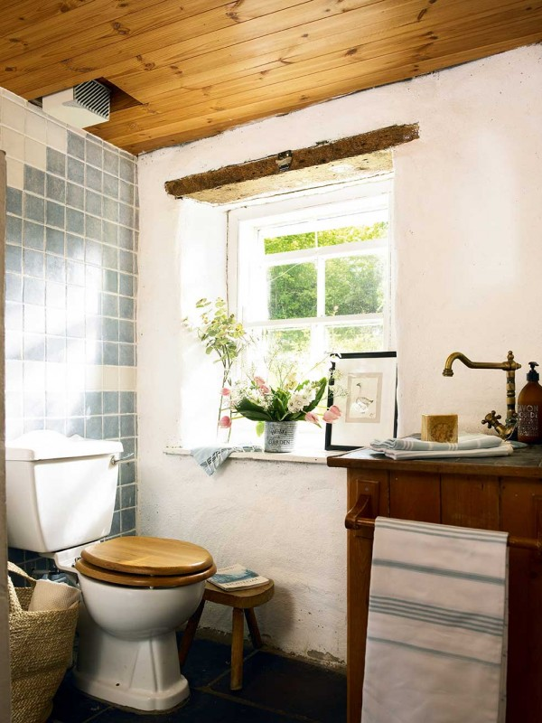 Graham-thatched-cottage-toilet-bathroom